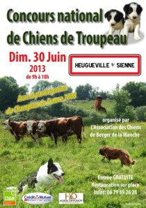 affiche concours national chiens